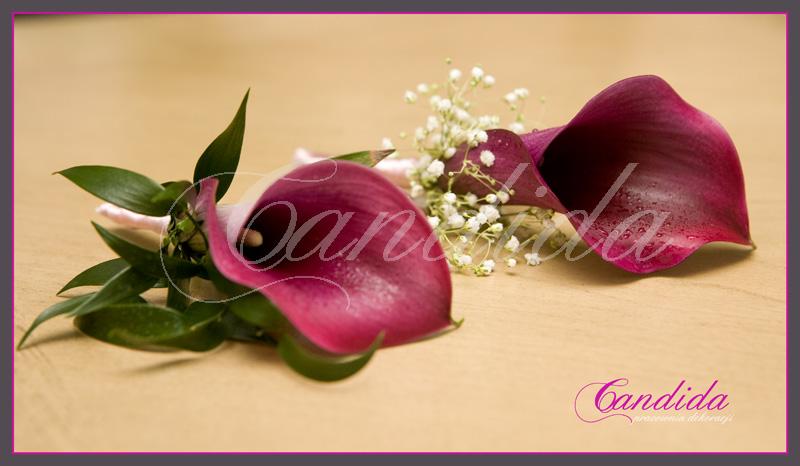 Butonierka dla Pana Młodego wykonana z różowych cantedeskii