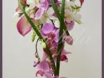 Wiązanka ślubna z cantedeskii, storczyka phalenopsis, storczyka dendrobium