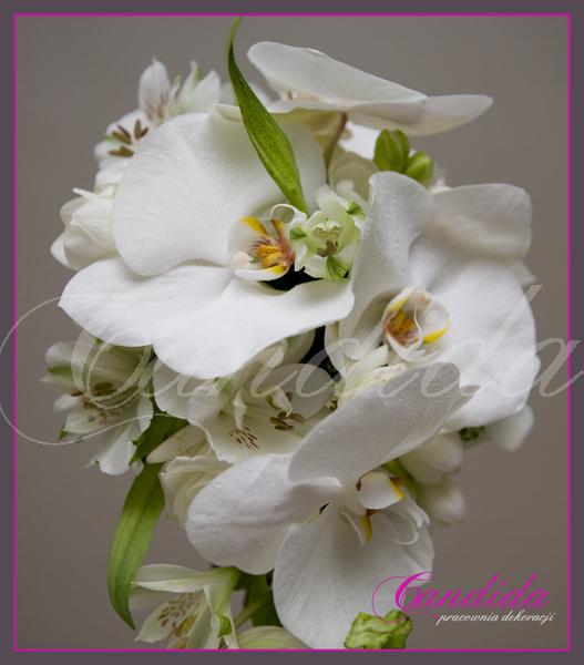 wiązanka ślubna ze storczyka phalenopsis, alstromerii
