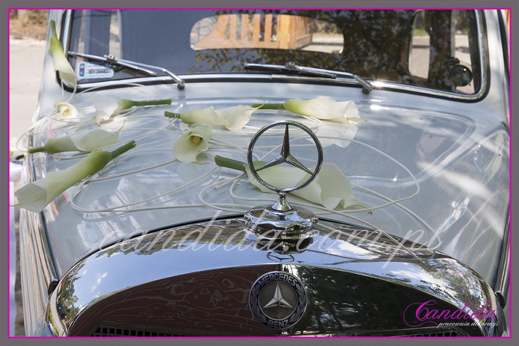 dekoracja ślubna samochodu, zabytkowy mercedes przyozdobiony do ślubu