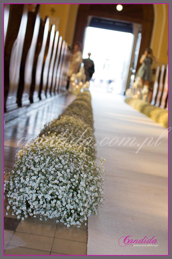 dekoracja kościoła na ślub gipsówka, dekoracja ślubna z gipsówki nawy głównej kościoła, biały dywan