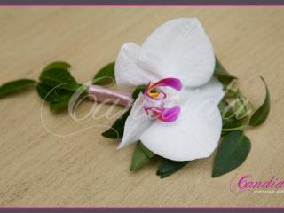 Butonierka dla Pana Młodego wykonana ze storczyka phalenopsis, barwinka, butonierki 11