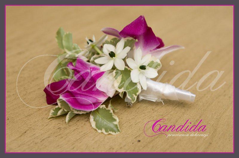 Butonierka dla Pana Młodego wykonana z różowego storczyka dendrobium, ornitogalum, pitosporum, butonierki 15