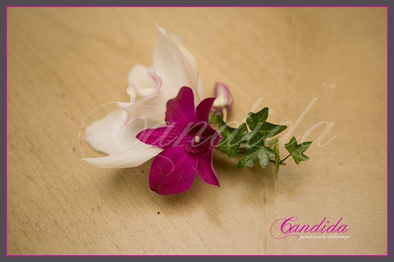 Butonierka dla Pana Młodego wykonana z różowego storczyka dendrobium, białego storczyka cymbidium, hedery, butonierki 21