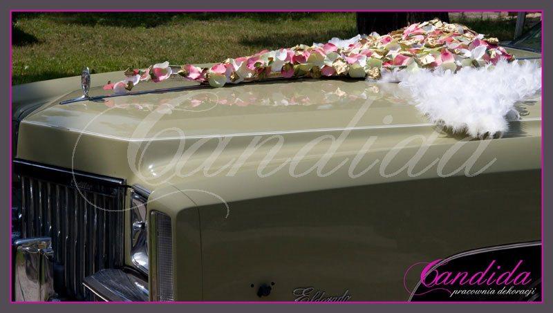 dekoracje samochodu do ślubu wykonana z serca z płatków róż i białych skrzydeł