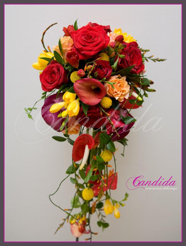 Wiązanka ślubna z róż, cantedeskii, anturium, frezji, crapsedii